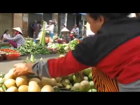 ORGANIC FOOD IN VIETNAM