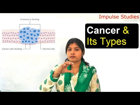 Cancer, Types Of Cancer, How It Develops Itself.