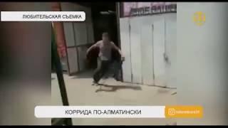 Разъяренный бык устроил погром на рынке в Алматинской области