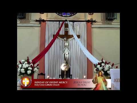 Holy Cross Catholic Church JA Live Stream