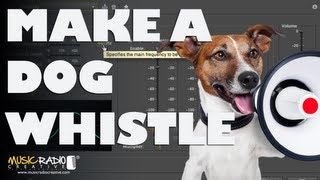 How To Make A Dog Whistle (High Frequency Sound Generator)