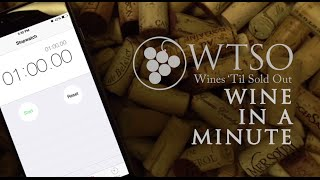WTSO Wine In A Minute: Paraiso Vineyards Pinot Noir 2012