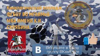 Кинологический колледж МГАВМиБ им. К. И. Скрябина открывает секреты