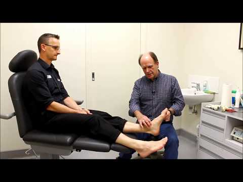 Understand your feet: How they work & why we can get problems Podiatrist Adelaide
