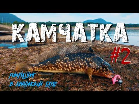 Рокфишинг на КАМЧАТКЕ - Рыболовные путешествия