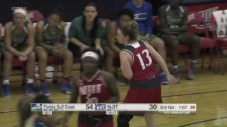 NJIT Highlights vs. FGCU