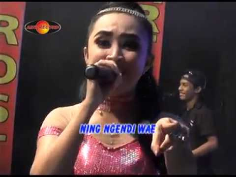 Rina Amelia Feat Gundik - Pokok'e Melu  - The Rosta - Aini Record