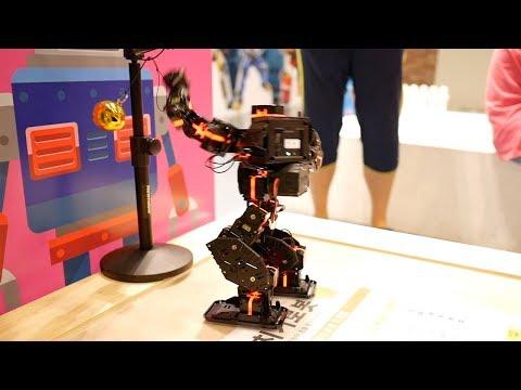 Mini robot made with Korean technologyGwacheon National Science Museum Robot boxing, dancing, fish