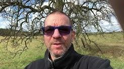 Der Dichter sitzt verschnupft im Nasenbaum (Gedicht)
