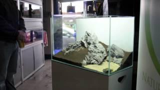 Nature Aquarium - 60 cm Iwagumi by Adam Wozniak