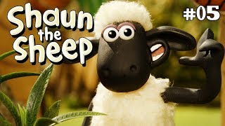 3DTV - Shaun the Sheep