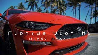 Mit dem Camaro durch Miami Beach 🚘| FLORIDA VLOG #1