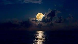 NO MORE Insomnia ★︎ Immune System Booster ★︎ Stress Relief, Delta Waves, Dark Screen