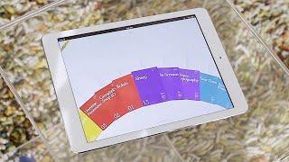 Form Follows Function on iPad