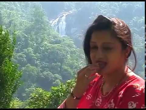 Destination GARO Hills | Part 3 | Nokrek Peak & Rongbang Fall | Adventure & Nature Tourism