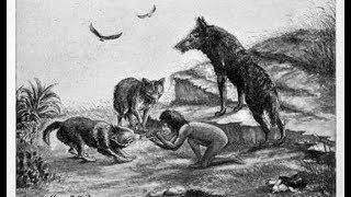 Dzieci wychowane przez zwierzęta