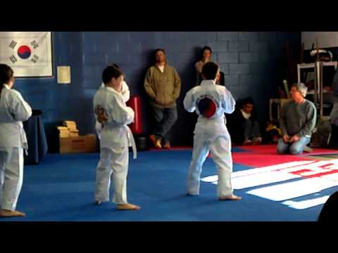 Michael and Patrick white belt Tang Soo Do test