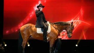 Боярский назвал женщин ломовыми лошадьми