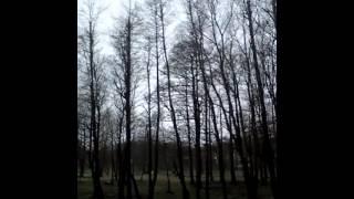 Путешествие по Калининграду и области. ч3(I created this video with the YouTube Video Editor (http://www.youtube.com/editor), 2013-04-28T16:52:49.000Z)