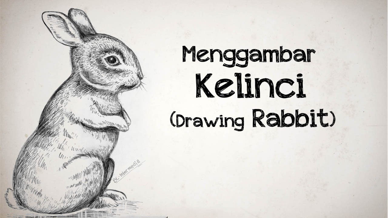 Drawing Tutorial Tutorial Menggambar Kelinci Rabbit Drawing