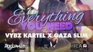 Vybz Kartel Ft. Gaza Slim - Everything You Need - Nov 2012