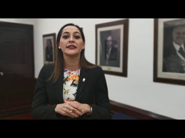 María Inés Solís habla sobre la acción de inconstitucional