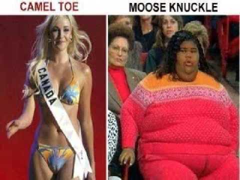 huge cameltoe