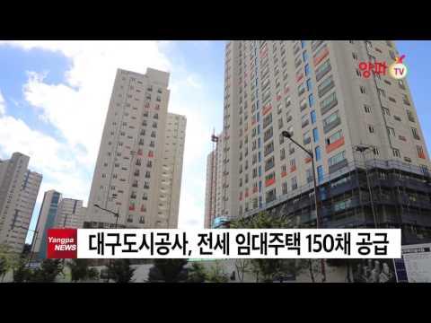 대구도시공사 전세 임대주택 150채 공급   양파tv