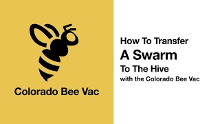 Colorado Bee Vac: How To Transfer A Swarm To The Hive
