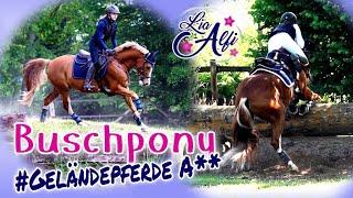 Lia & Alfi - Geländepferde A** - Eventing Pony Dobby
