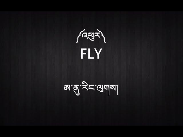 new-tibetan-song-with-lyrics-fly-anu-rangluk-tibetan-songs-and-lyrics