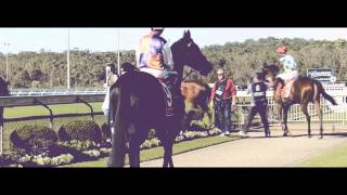 400 lux - horse racing