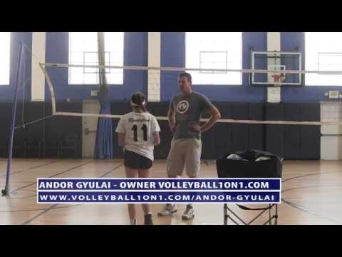 Youth Age 13 Private Volleyball Coaching Lesson for Spiking - Video 3 with Andor Gyulai
