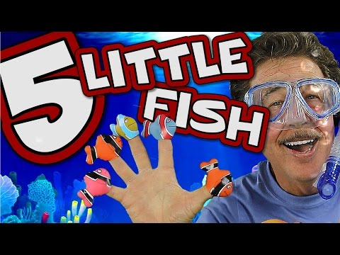 5-little-fish-|-count-to-5-|-fun-learning-song-for-kids-|-jack-hartmann