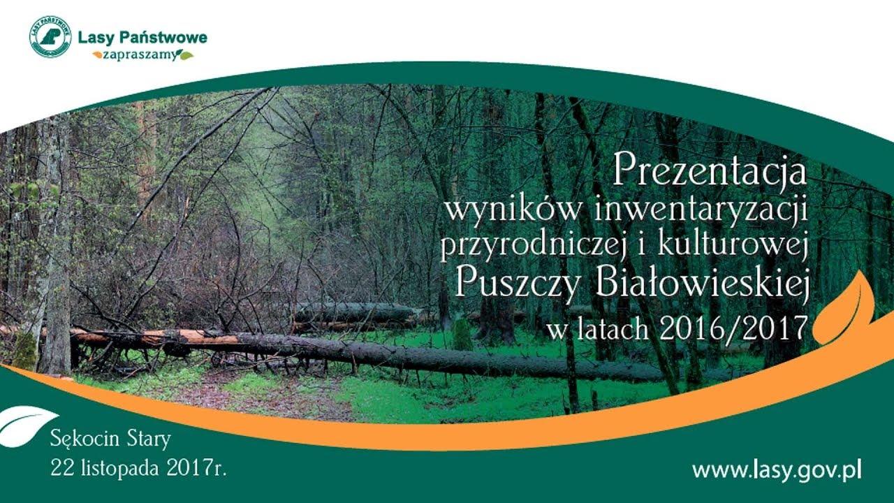 Prezentacja wyników inwentaryzacji Puszczy Białowieskiej w latach 2016/2017