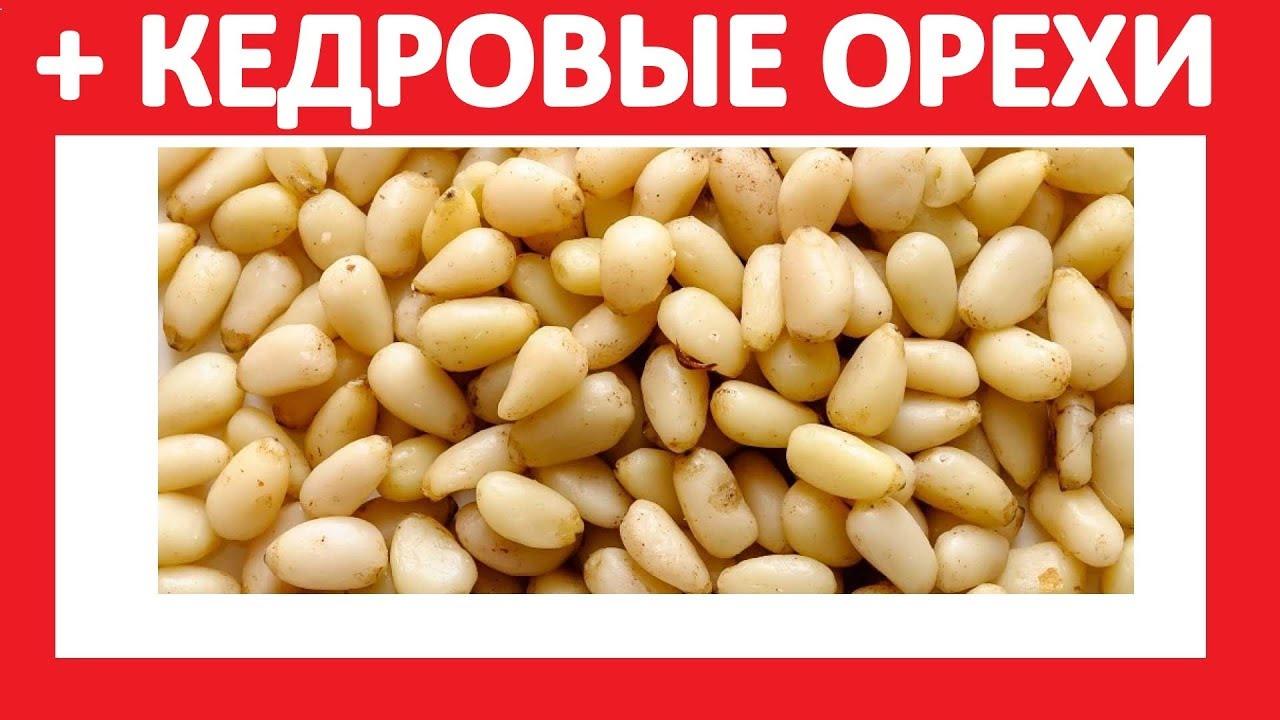 Продам кедровую шишку и кедр орех в скорлупе | новый урожай 2о17 года. Где купить ядро кедрового ореха крупным оптом | производитель сибирь?