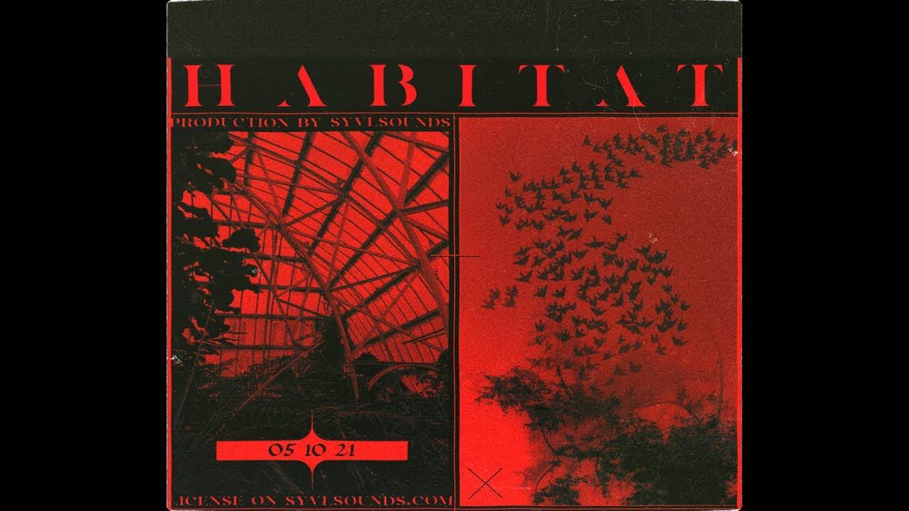 "Download [ACOUSTIC] Travis Scott x Young Thug Type Beat ""Habitat"""