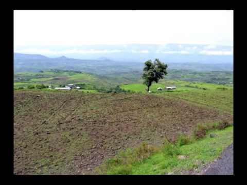 Agriculture in Ethiopia