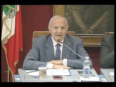 Prospettive di riforma UE, audizione di Savona