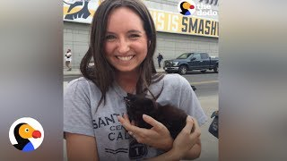 Kitten Rescued From Sewer Immediately Adopted by Girl   The Dodo