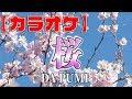 【カラオケ】DA PUMP/桜(3:25〜ガイドメロディーなし)