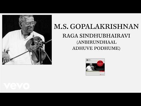 M.S. Gopalakrishnan - Raga Sindhubhairavi (Anbirundhaal Adhuve Podhume (Pseudo Video))