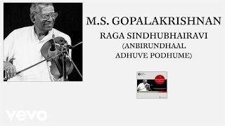 M.S. Gopalakrishnan - Raga Sindhubhairavi