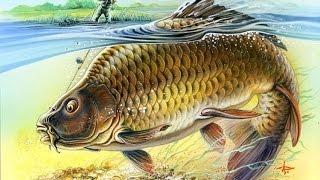 Рыбалка на реке Псёл