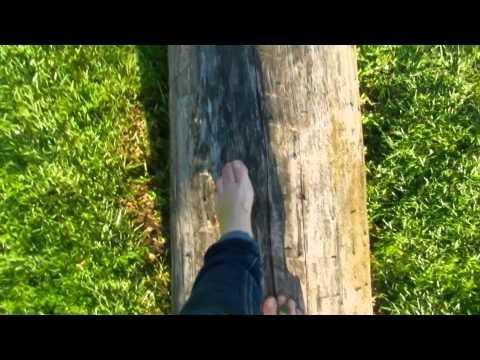 My Morning Walk  16/05/13 Barefoot Benefits