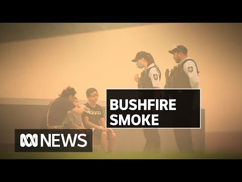 Are There Long-term Health Risks From Breathing Bushfire Smoke? | ABC News