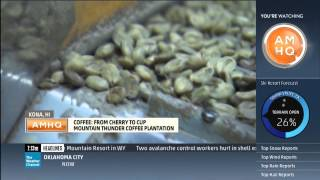 Where Does Kona Coffee Come From? PART 2