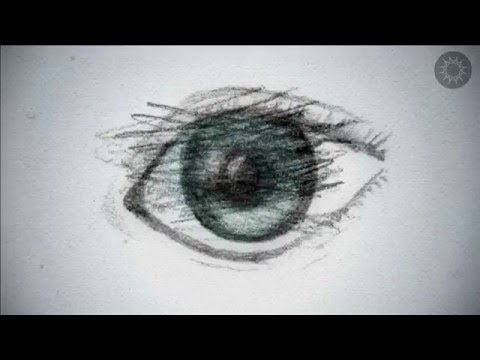 """What Does """"Off the Left Eye"""" Mean? – S&L Short Clips"""