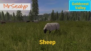 Farming Simulator 17 PS4: Goldcrest Valley, Sheep Guide.