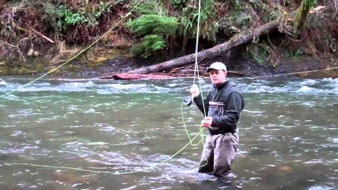 North fork of the nehalem fly fishing fishing clinic with for Nehalem river fishing